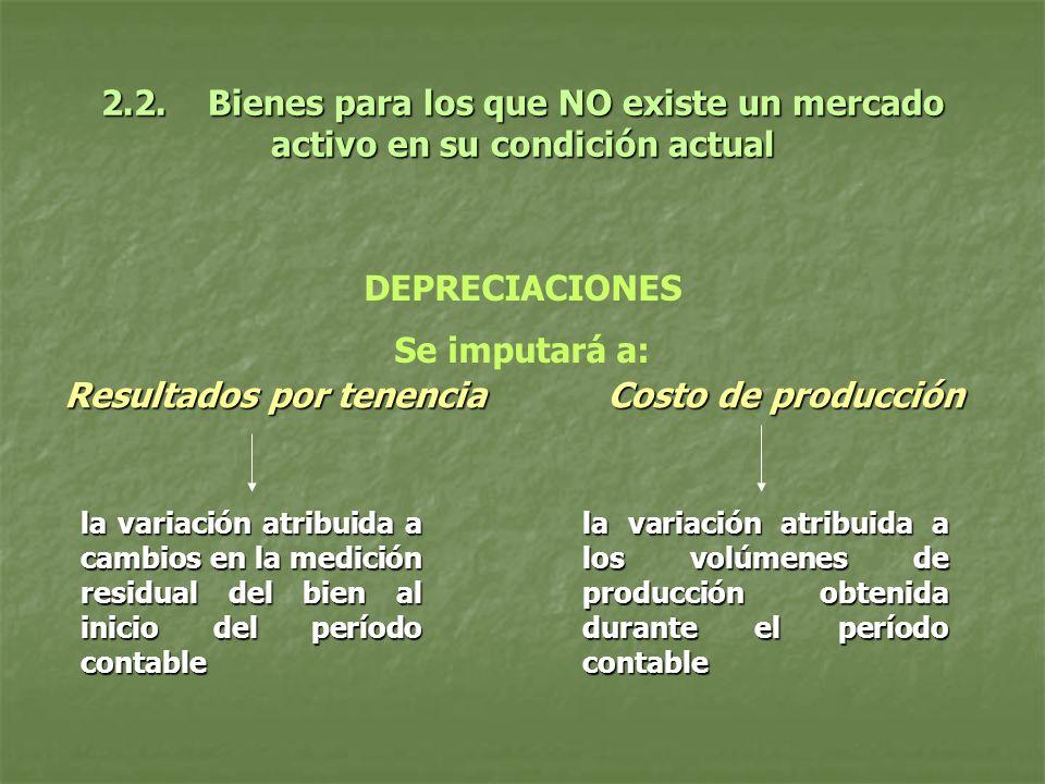 2.2. Bienes para los que NO existe un mercado activo en su condición actual DEPRECIACIONES Se imputará a: Resultados por tenencia Costo de producción