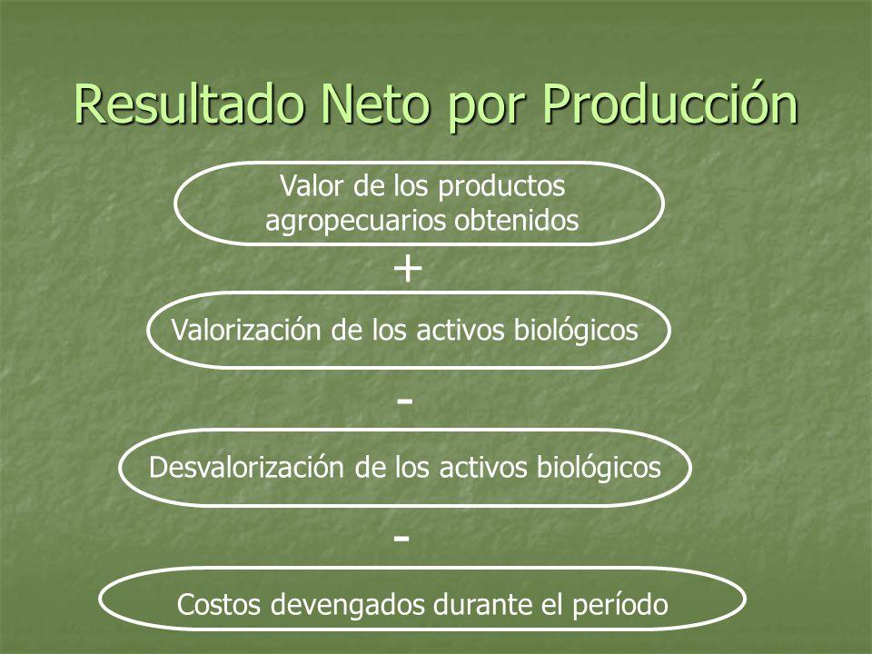 Resultado Neto por Producción Valor de los productos agropecuarios obtenidos + Valorización de los activos biológicos - Desvalorización de los activos