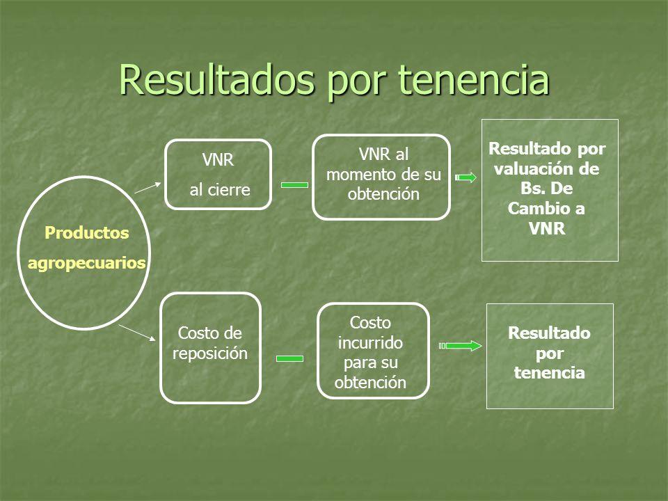 Resultados por tenencia Productos agropecuarios VNR al cierre VNR al momento de su obtención Resultado por valuación de Bs. De Cambio a VNR Costo de r