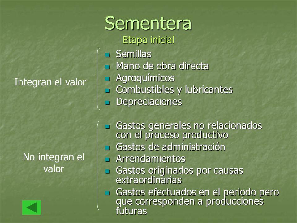 Sementera Etapa inicial Semillas Semillas Mano de obra directa Mano de obra directa Agroquímicos Agroquímicos Combustibles y lubricantes Combustibles