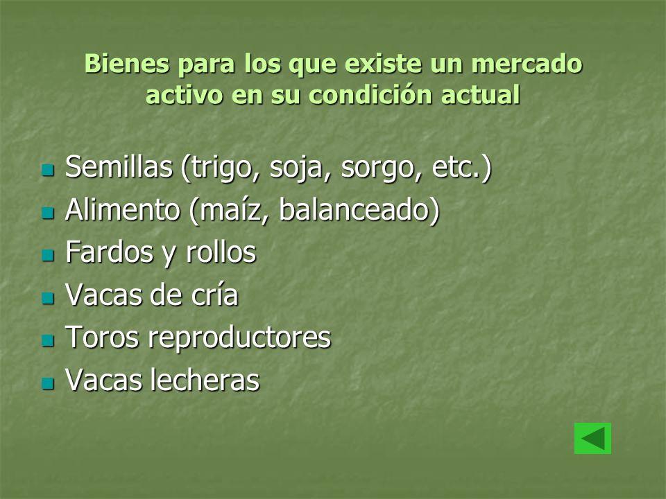 Bienes para los que existe un mercado activo en su condición actual Semillas (trigo, soja, sorgo, etc.) Semillas (trigo, soja, sorgo, etc.) Alimento (