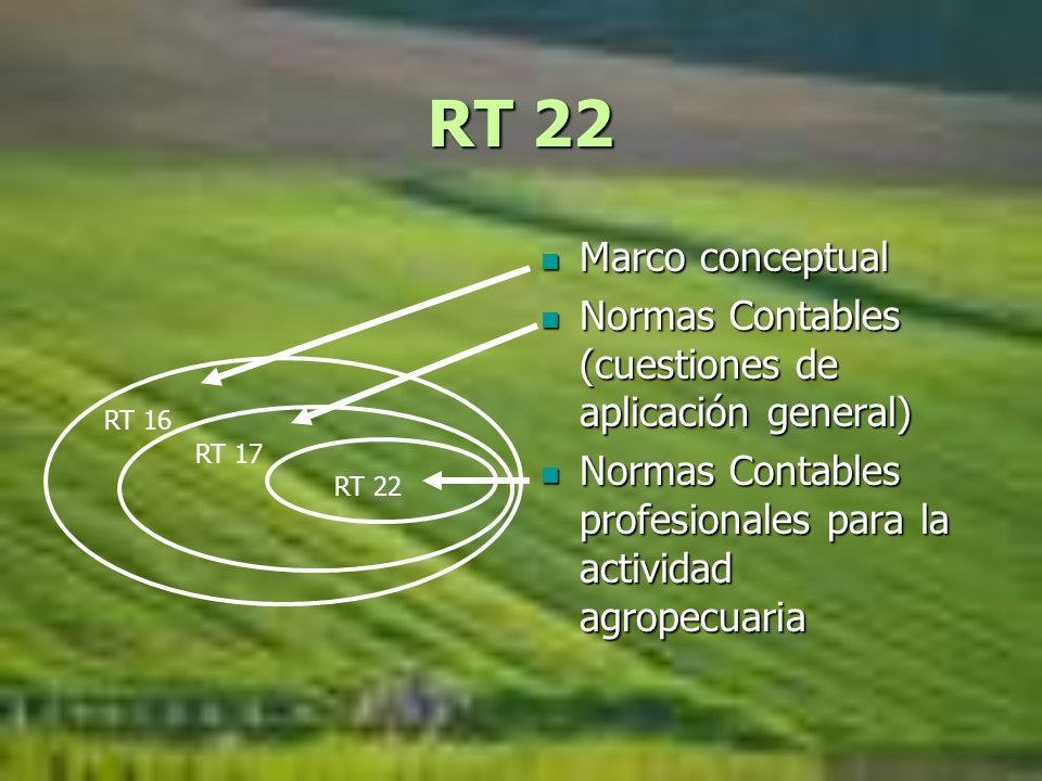 RT 22 Marco conceptual Marco conceptual Normas Contables (cuestiones de aplicación general) Normas Contables (cuestiones de aplicación general) Normas