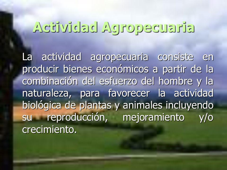 Actividad Agropecuaria La actividad agropecuaria consiste en producir bienes económicos a partir de la combinación del esfuerzo del hombre y la natura
