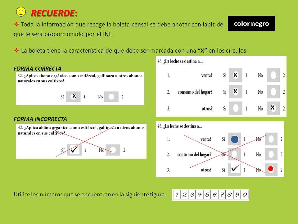 RECUERDE: Toda la información que recoge la boleta censal se debe anotar con lápiz de que le será proporcionado por el INE.