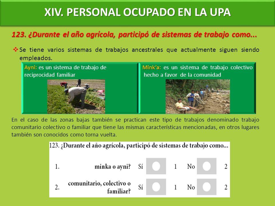 XIV. PERSONAL OCUPADO EN LA UPA 123. ¿Durante el año agrícola, participó de sistemas de trabajo como... Se tiene varios sistemas de trabajos ancestral
