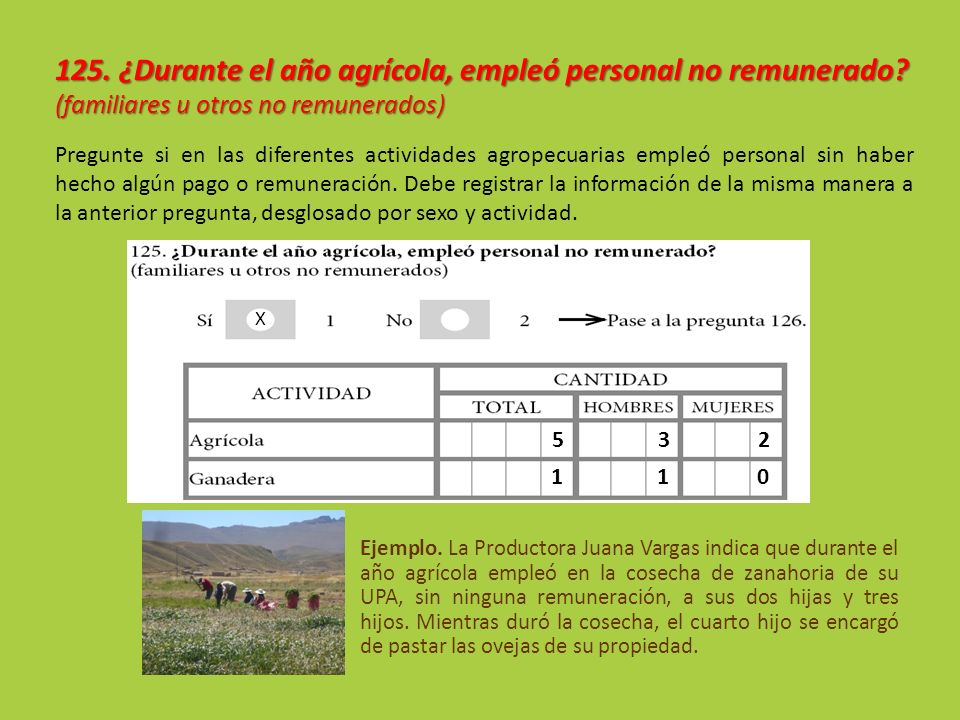 Ejemplo. La Productora Juana Vargas indica que durante el año agrícola empleó en la cosecha de zanahoria de su UPA, sin ninguna remuneración, a sus do