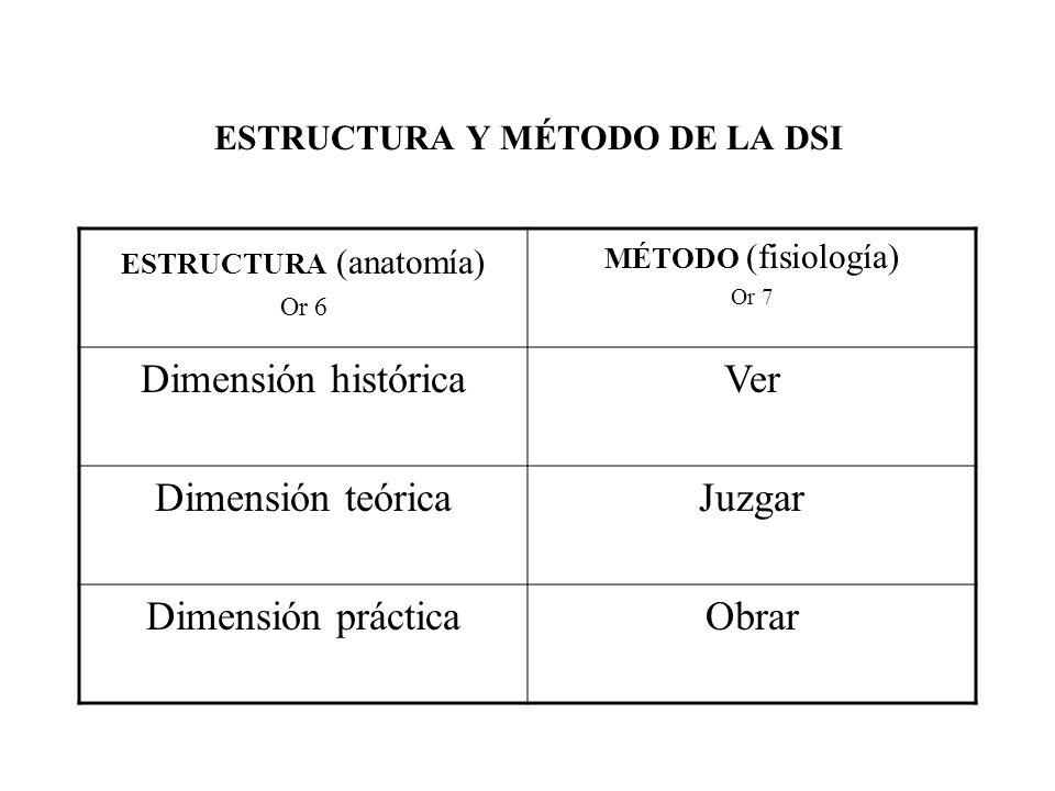 ESTRUCTURA Y MÉTODO DE LA DSI ESTRUCTURA (anatomía) Or 6 MÉTODO (fisiología) Or 7 Dimensión históricaVer Dimensión teóricaJuzgar Dimensión prácticaObr