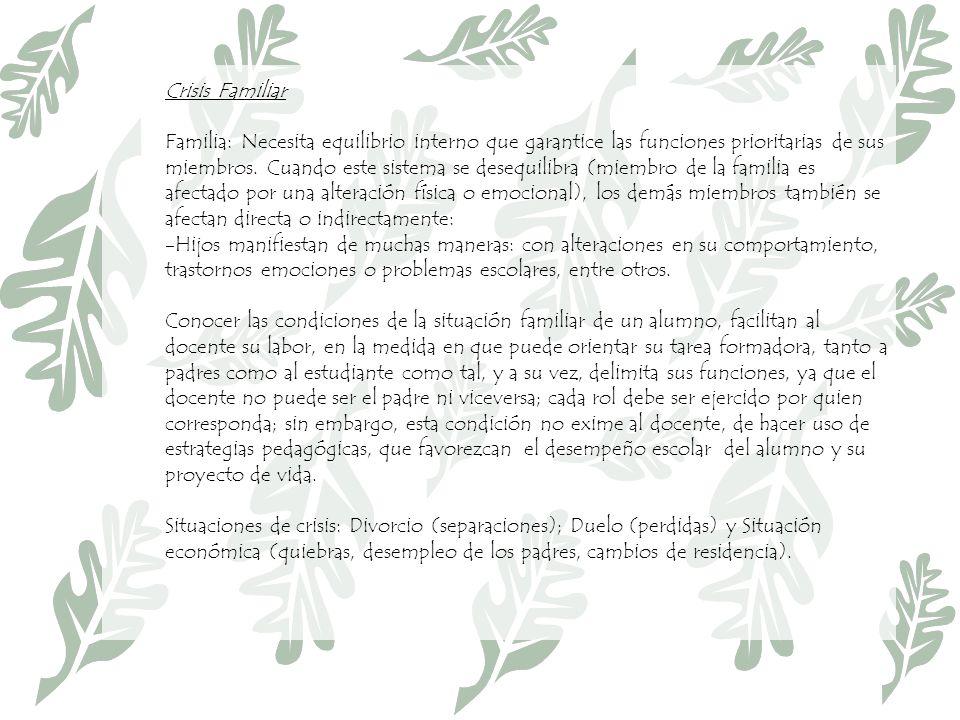Crisis Familiar Familia: Necesita equilibrio interno que garantice las funciones prioritarias de sus miembros.
