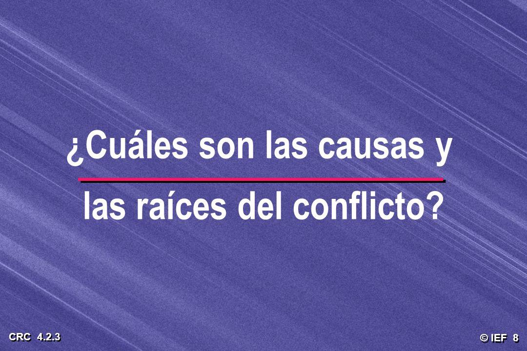 © IEF 8 CRC 4.2.3 ¿Cuáles son las causas y las raíces del conflicto?