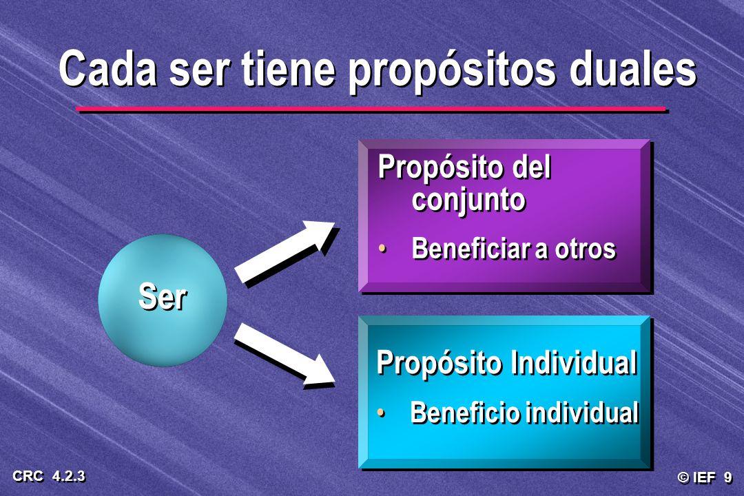 © IEF 9 CRC 4.2.3 Propósito Individual Beneficio individual Propósito del conjunto Beneficiar a otros Propósito del conjunto Beneficiar a otros Cada s