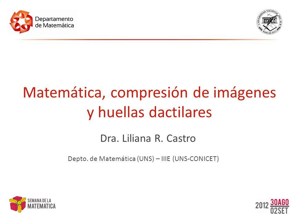 Matemática, compresión de imágenes y huellas dactilares Dra. Liliana R. Castro Depto. de Matemática (UNS) – IIIE (UNS-CONICET)