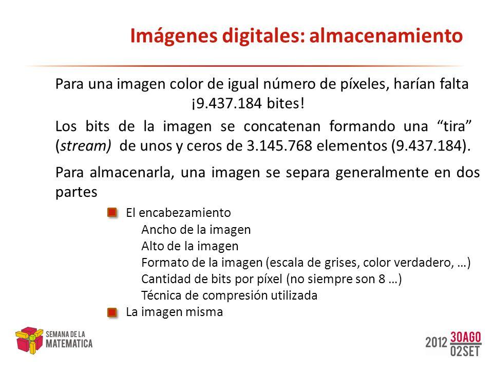 Imágenes digitales: almacenamiento Para almacenarla, una imagen se separa generalmente en dos partes El encabezamiento Ancho de la imagen Alto de la i