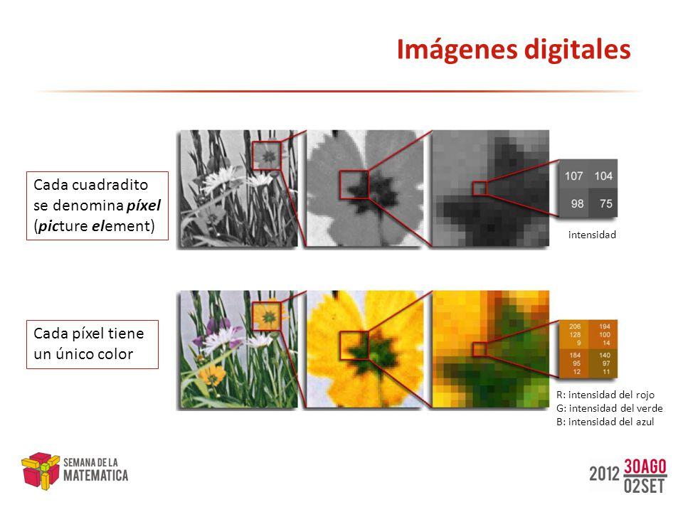 Imágenes digitales intensidad Cada cuadradito se denomina píxel (picture element) R: intensidad del rojo G: intensidad del verde B: intensidad del azu