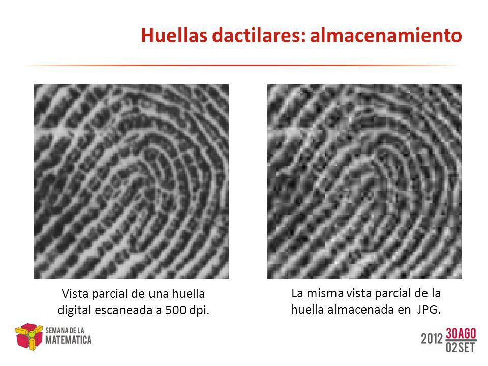 Huellas dactilares: almacenamiento Vista parcial de una huella digital escaneada a 500 dpi. La misma vista parcial de la huella almacenada en JPG.