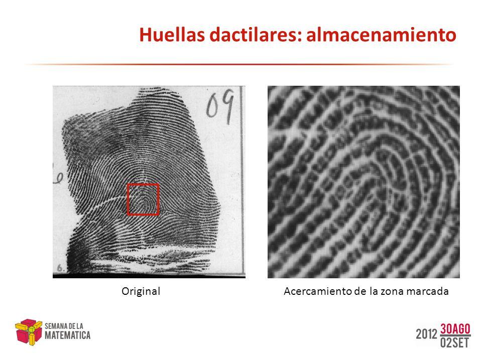 Huellas dactilares: almacenamiento OriginalAcercamiento de la zona marcada