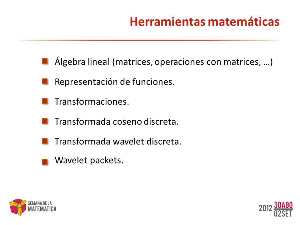 Herramientas matemáticas Álgebra lineal (matrices, operaciones con matrices, …) Transformada coseno discreta. Transformada wavelet discreta. Transform