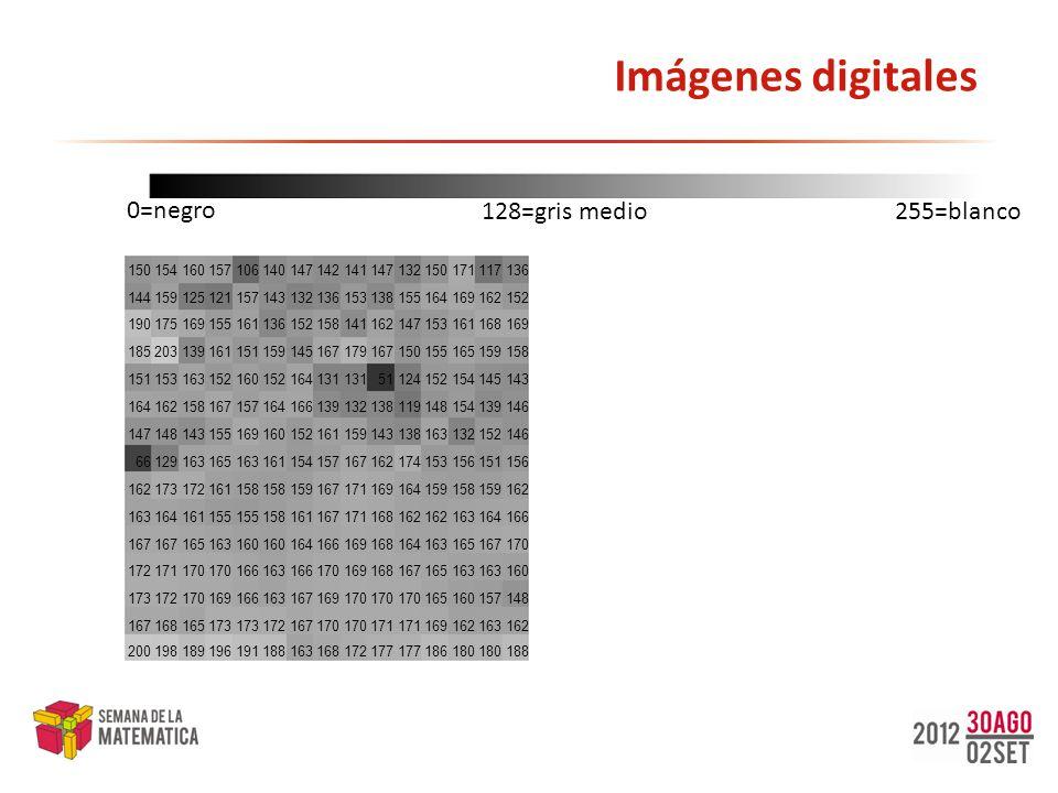 Compresión: esquemas Los esquemas de compresión de imágenes se dividen en dos grandes grupos esquemas de compresión con pérdidas, esquemas de compresión sin pérdidas.