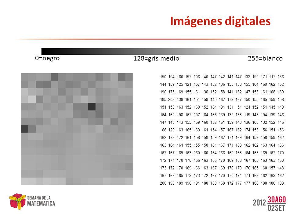 Imágenes digitales: almacenamiento ¿Cómo se guardan las imágenes digitales.