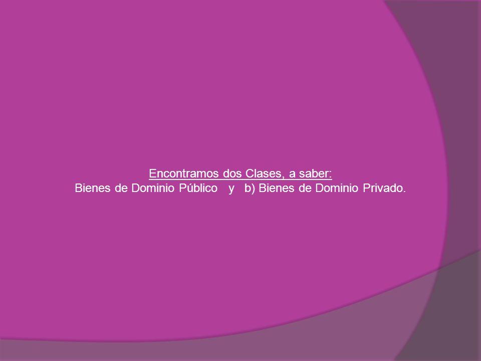 Encontramos dos Clases, a saber: Bienes de Dominio Público y b) Bienes de Dominio Privado.