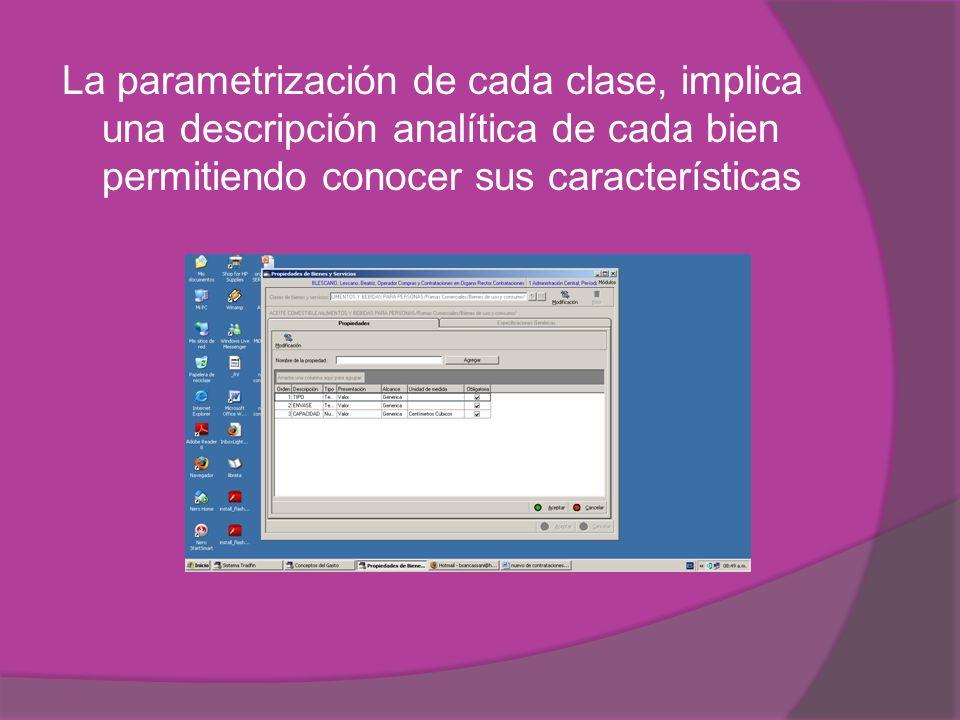 La parametrización de cada clase, implica una descripción analítica de cada bien permitiendo conocer sus características