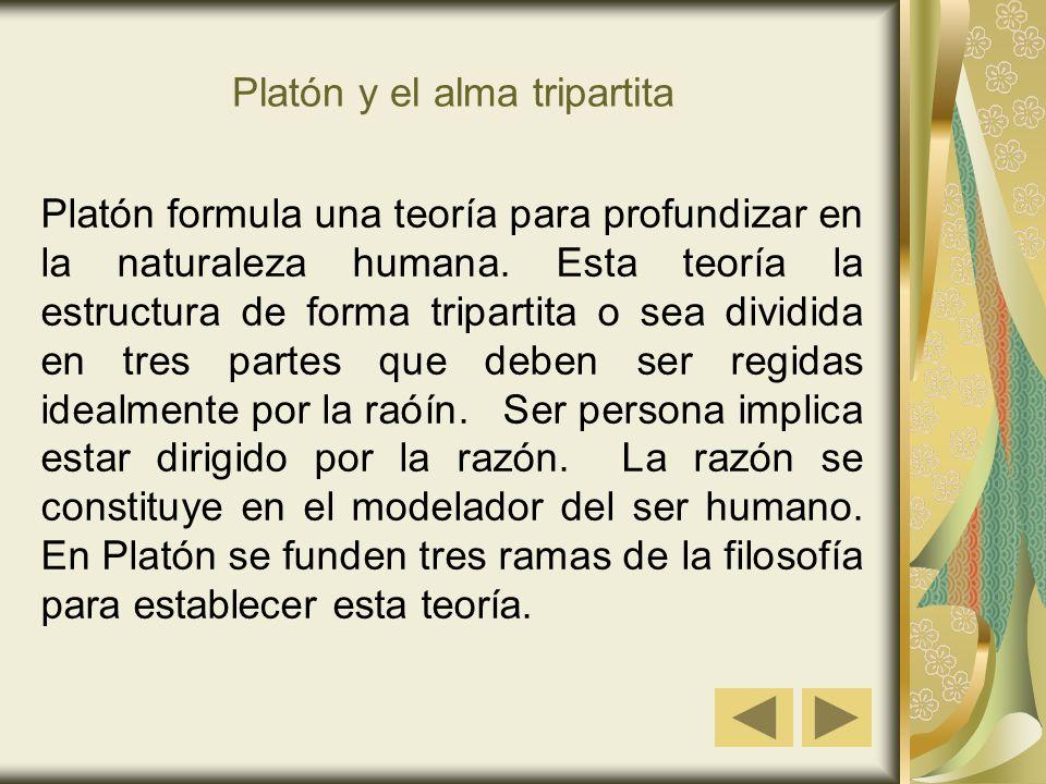 Platón y el alma tripartita Platón formula una teoría para profundizar en la naturaleza humana. Esta teoría la estructura de forma tripartita o sea di
