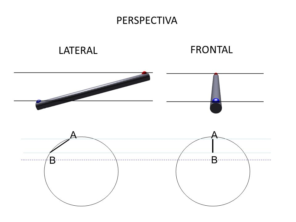 LATERAL FRONTAL PERSPECTIVA B A B A