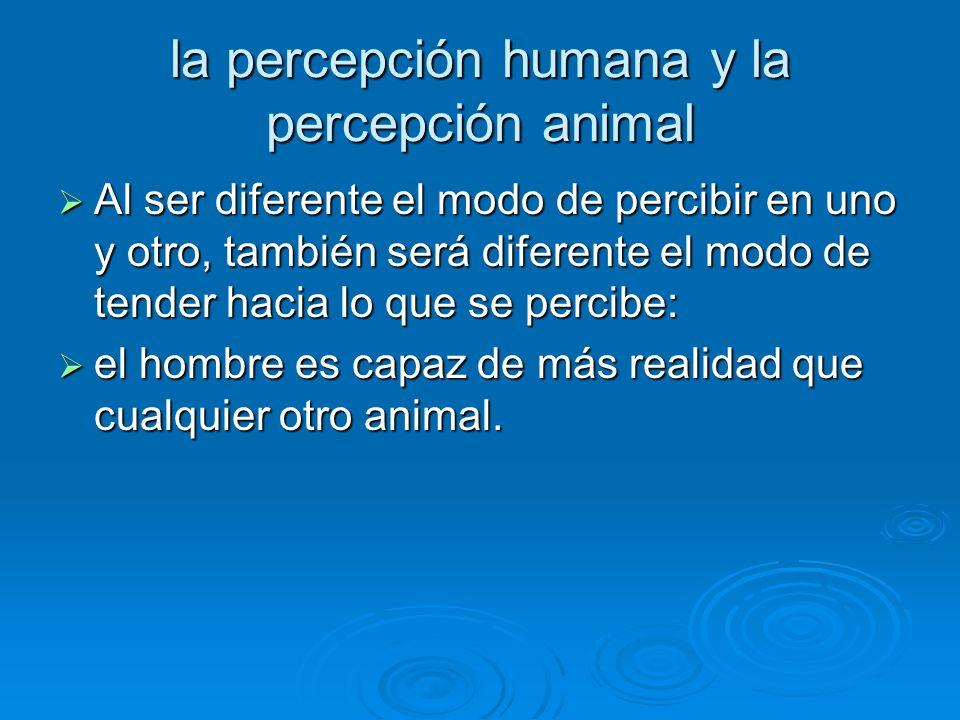 la percepción humana y la percepción animal Al ser diferente el modo de percibir en uno y otro, también será diferente el modo de tender hacia lo que