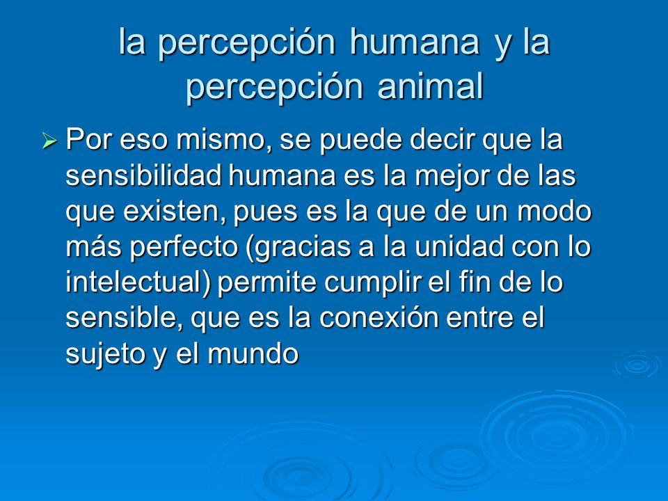 la percepción humana y la percepción animal Por eso mismo, se puede decir que la sensibilidad humana es la mejor de las que existen, pues es la que de