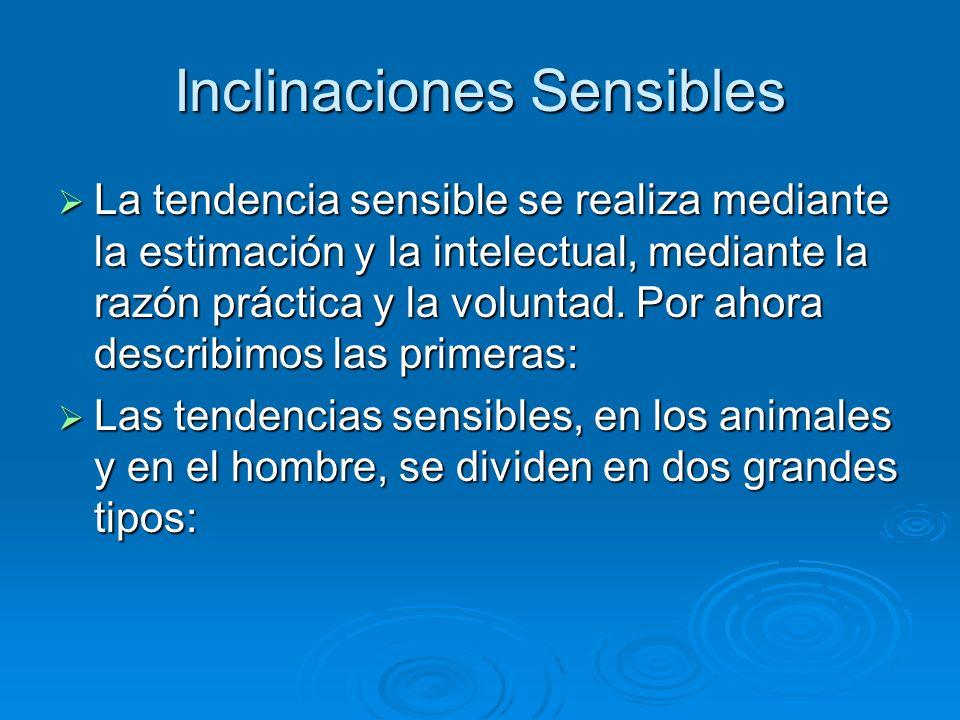 Inclinaciones Sensibles La tendencia sensible se realiza mediante la estimación y la intelectual, mediante la razón práctica y la voluntad. Por ahora