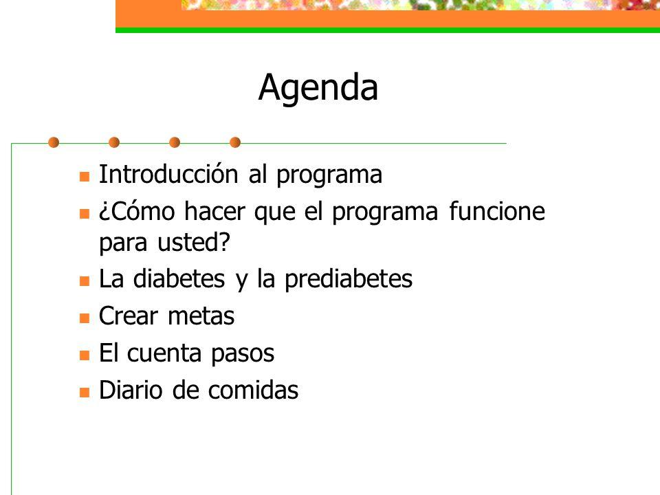 Agenda Introducción al programa ¿Cómo hacer que el programa funcione para usted? La diabetes y la prediabetes Crear metas El cuenta pasos Diario de co