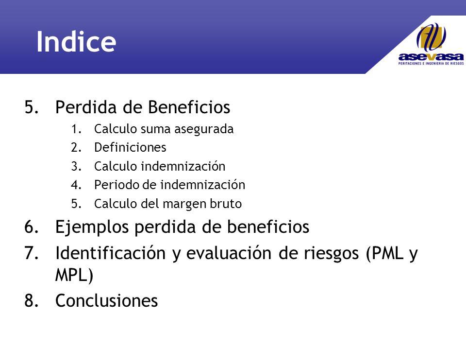 Indice 5.Perdida de Beneficios 1.Calculo suma asegurada 2.Definiciones 3.Calculo indemnización 4.Periodo de indemnización 5.Calculo del margen bruto 6.Ejemplos perdida de beneficios 7.Identificación y evaluación de riesgos (PML y MPL) 8.Conclusiones