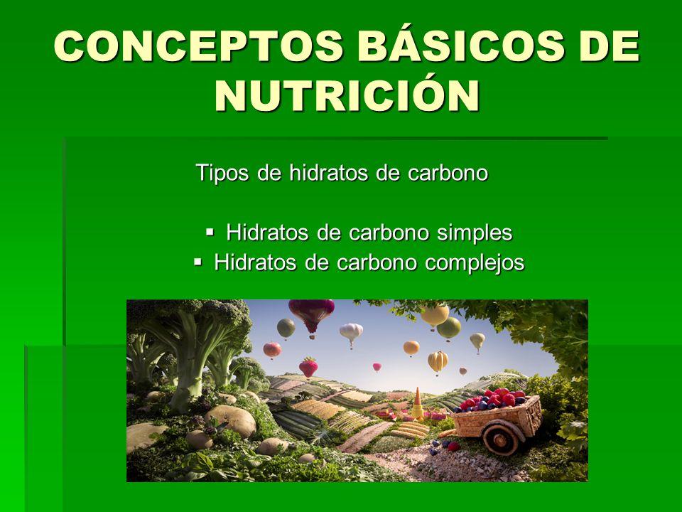 CONCEPTOS BÁSICOS DE NUTRICIÓN Tipos de hidratos de carbono Hidratos de carbono simples Hidratos de carbono simples Hidratos de carbono complejos Hidr