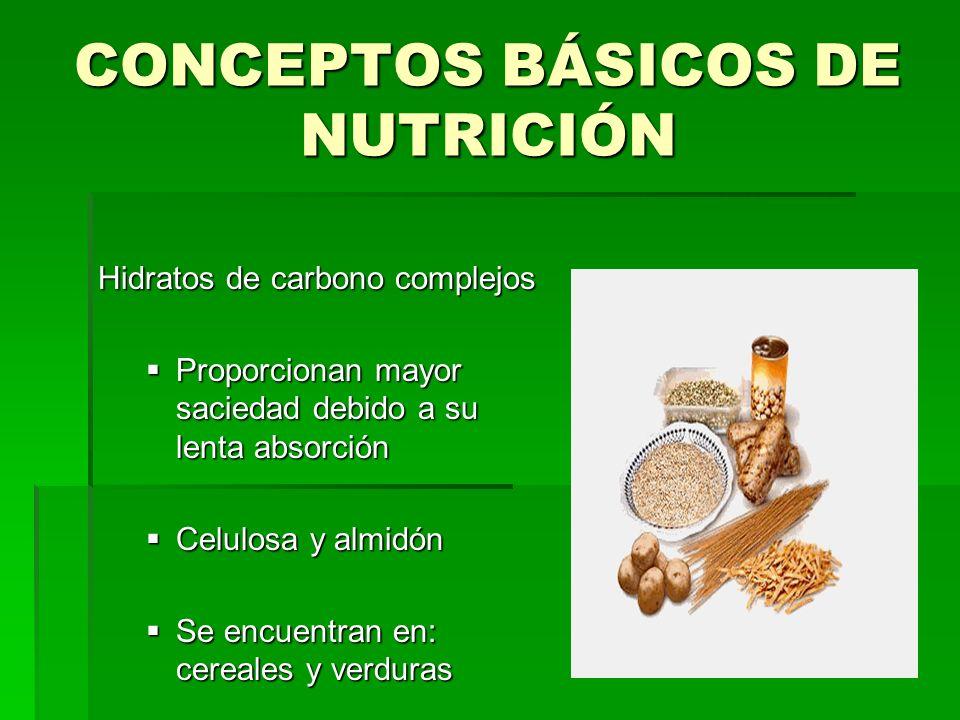 CONCEPTOS BÁSICOS DE NUTRICIÓN Hidratos de carbono complejos Proporcionan mayor saciedad debido a su lenta absorción Proporcionan mayor saciedad debid