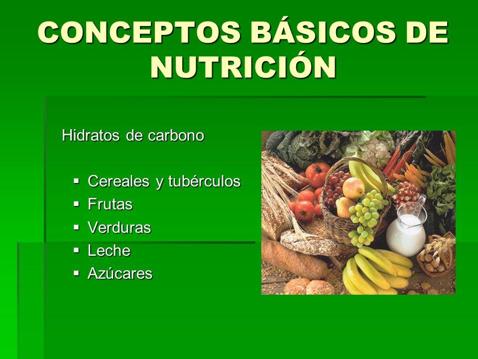 CONCEPTOS BÁSICOS DE NUTRICIÓN Hidratos de carbono Hidratos de carbono Cereales y tubérculos Cereales y tubérculos Frutas Frutas Verduras Verduras Lec