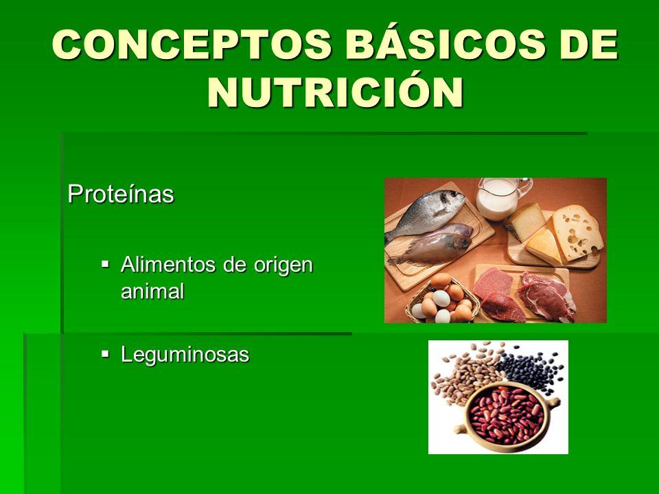 CONCEPTOS BÁSICOS DE NUTRICIÓN Proteínas Alimentos de origen animal Alimentos de origen animal Leguminosas Leguminosas