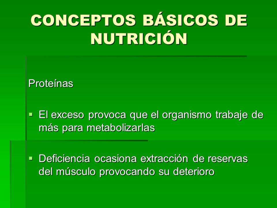 CONCEPTOS BÁSICOS DE NUTRICIÓN Proteínas El exceso provoca que el organismo trabaje de más para metabolizarlas El exceso provoca que el organismo trab