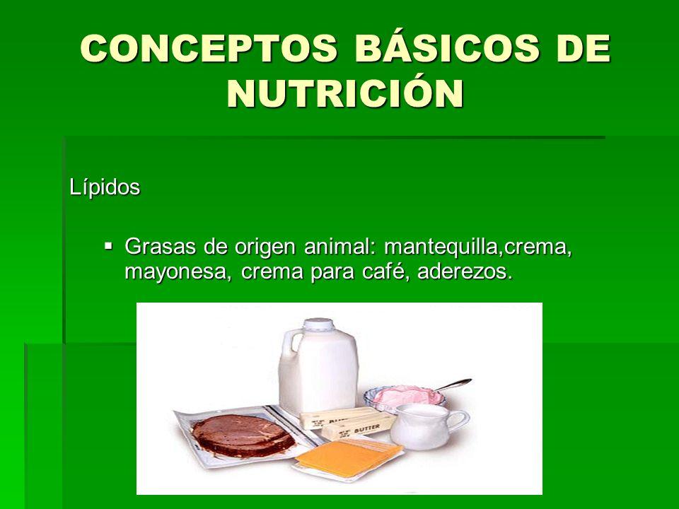 CONCEPTOS BÁSICOS DE NUTRICIÓN Lípidos Grasas de origen animal: mantequilla,crema, mayonesa, crema para café, aderezos. Grasas de origen animal: mante