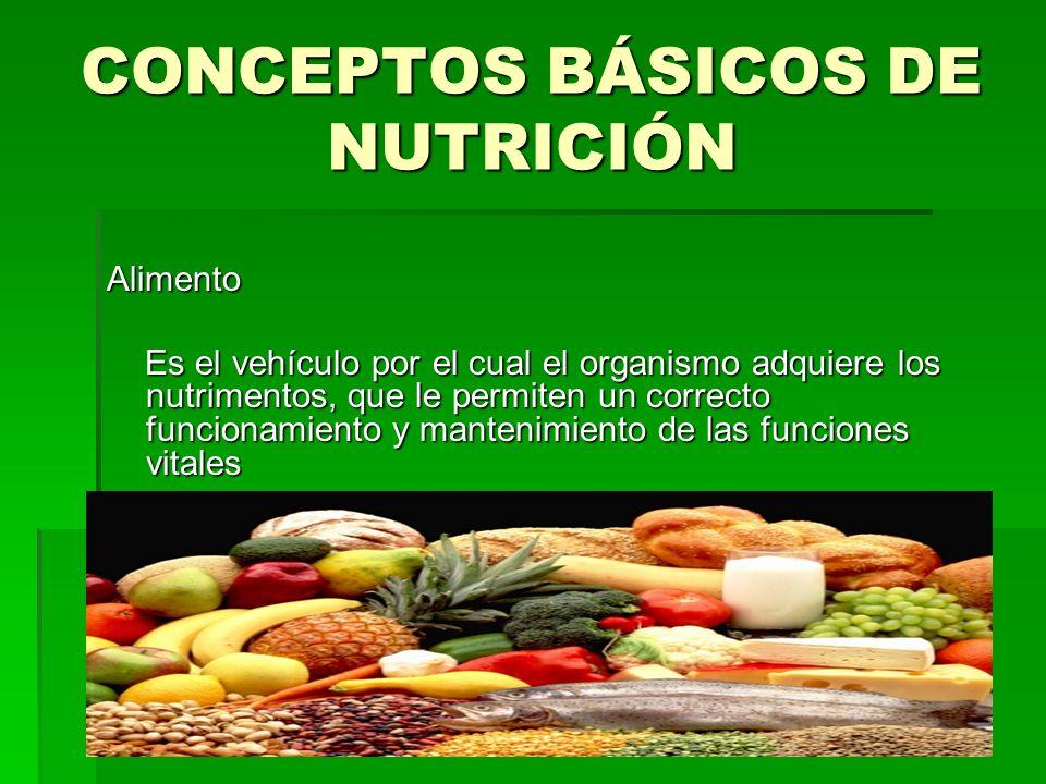 CONCEPTOS BÁSICOS DE NUTRICIÓN Alimento Es el vehículo por el cual el organismo adquiere los nutrimentos, que le permiten un correcto funcionamiento y
