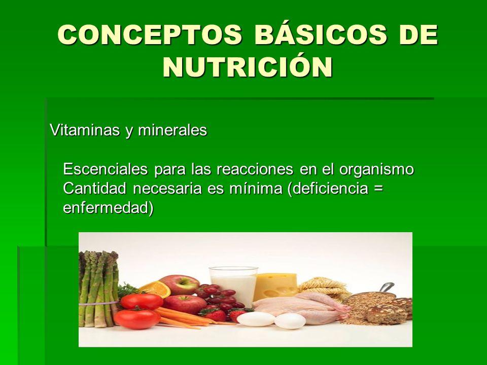 CONCEPTOS BÁSICOS DE NUTRICIÓN Vitaminas y minerales Escenciales para las reacciones en el organismo Escenciales para las reacciones en el organismo C
