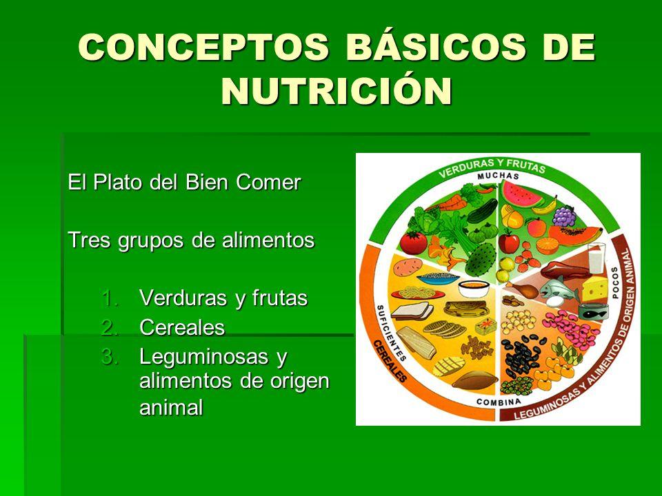 CONCEPTOS BÁSICOS DE NUTRICIÓN El Plato del Bien Comer Tres grupos de alimentos 1.Verduras y frutas 2.Cereales 3.Leguminosas y alimentos de origen ani