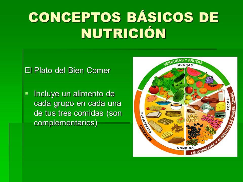 CONCEPTOS BÁSICOS DE NUTRICIÓN El Plato del Bien Comer Incluye un alimento de cada grupo en cada una de tus tres comidas (son complementarios) Incluye