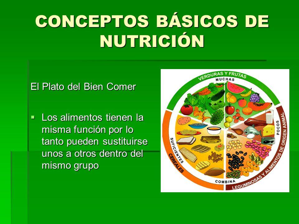 CONCEPTOS BÁSICOS DE NUTRICIÓN El Plato del Bien Comer Los alimentos tienen la misma función por lo tanto pueden sustituirse unos a otros dentro del m