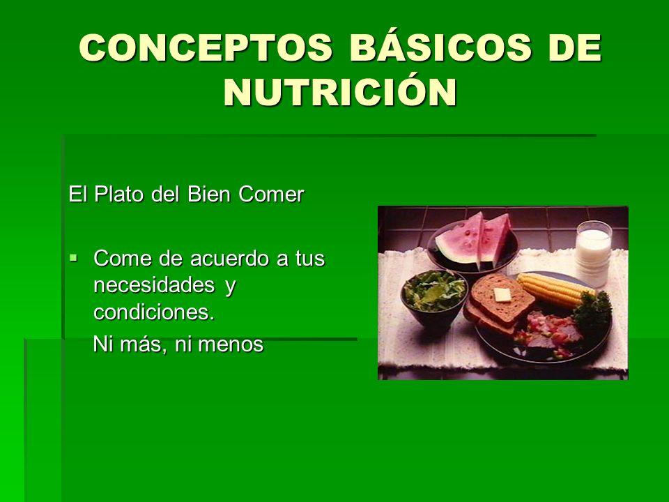 CONCEPTOS BÁSICOS DE NUTRICIÓN El Plato del Bien Comer Come de acuerdo a tus necesidades y condiciones. Come de acuerdo a tus necesidades y condicione