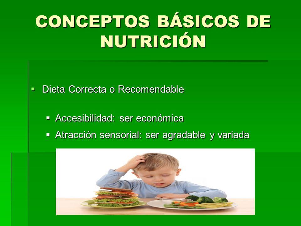 CONCEPTOS BÁSICOS DE NUTRICIÓN Dieta Correcta o Recomendable Dieta Correcta o Recomendable Accesibilidad: ser económica Accesibilidad: ser económica A