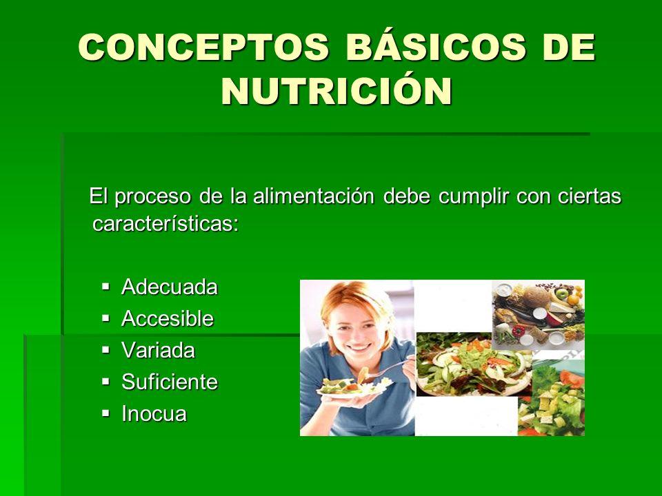 CONCEPTOS BÁSICOS DE NUTRICIÓN El proceso de la alimentación debe cumplir con ciertas características: El proceso de la alimentación debe cumplir con