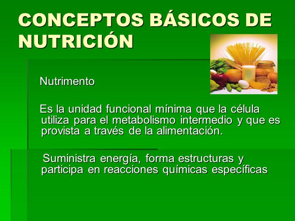 CONCEPTOS BÁSICOS DE NUTRICIÓN Nutrimento Nutrimento Es la unidad funcional mínima que la célula utiliza para el metabolismo intermedio y que es provi