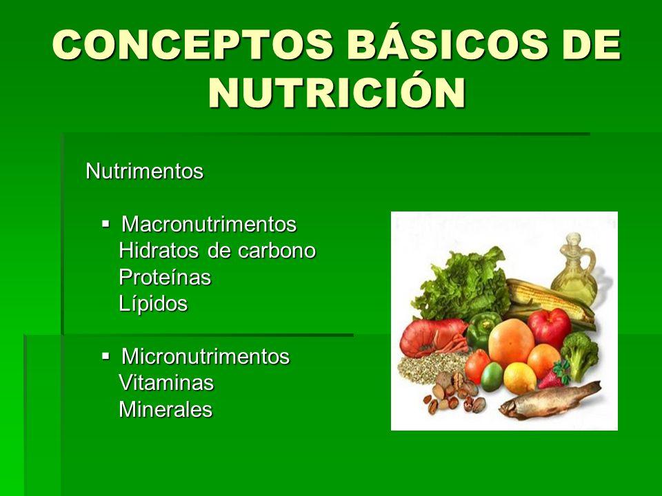 CONCEPTOS BÁSICOS DE NUTRICIÓN Nutrimentos Nutrimentos Macronutrimentos Macronutrimentos Hidratos de carbono Hidratos de carbono Proteínas Proteínas L