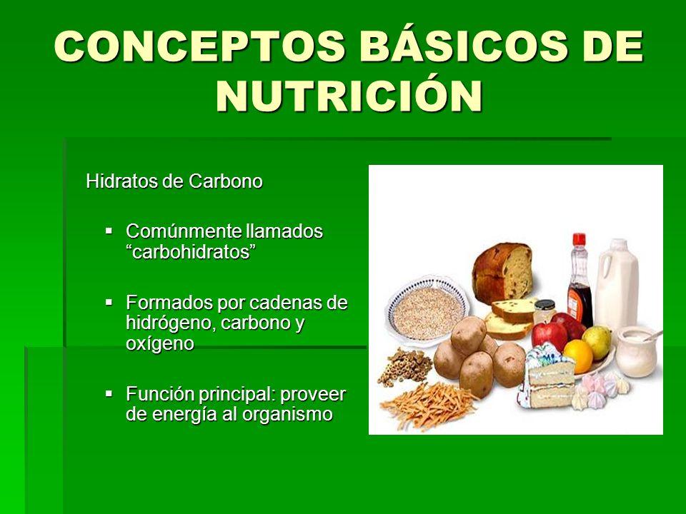 CONCEPTOS BÁSICOS DE NUTRICIÓN Hidratos de Carbono Hidratos de Carbono Comúnmente llamados carbohidratos Comúnmente llamados carbohidratos Formados po