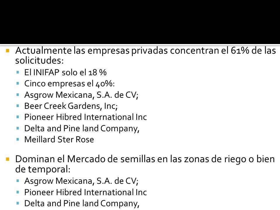 Actualmente las empresas privadas concentran el 61% de las solicitudes: El INIFAP solo el 18 % Cinco empresas el 40%: Asgrow Mexicana, S.A. de CV; Bee
