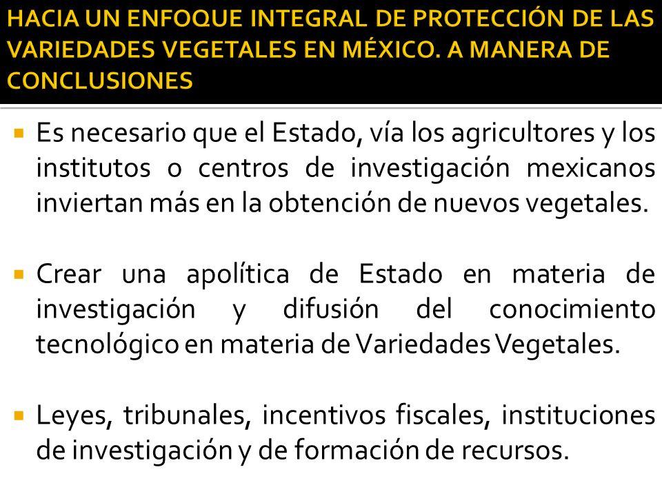 Es necesario que el Estado, vía los agricultores y los institutos o centros de investigación mexicanos inviertan más en la obtención de nuevos vegetal